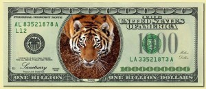 Money-Individual-Tiger_1